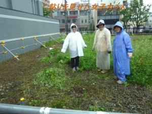 2015.7.7遠友夜学校跡地の草取り_3
